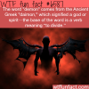 demon wtf fun facts