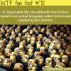 despicable me minions language facts wtf fun