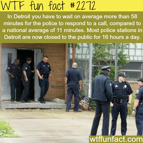 Detroit Police -WTF fun facts