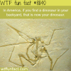 dinosaur wtf fun facts