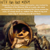 diogenes wtf fun facts