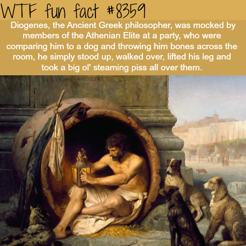 Diogenes - WTF fun facts