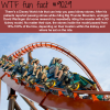 disney world ride that will help you pass a kidney