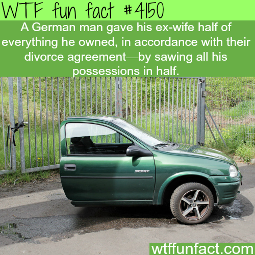 Divorced man gives his ex wife half of what he owns -  WTF fun facts