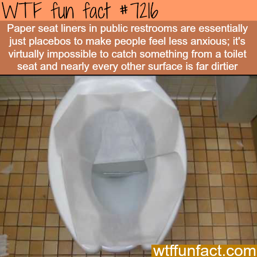 does paper seats actually work? - WTF Fun Fact