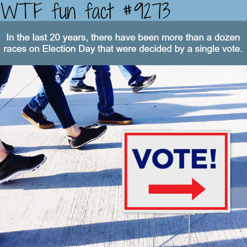 Does Your Vote Matter? - WTF fun fact