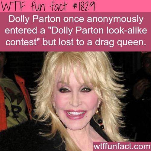 Dolly Parton Look-alike Contest -WTF fun facts