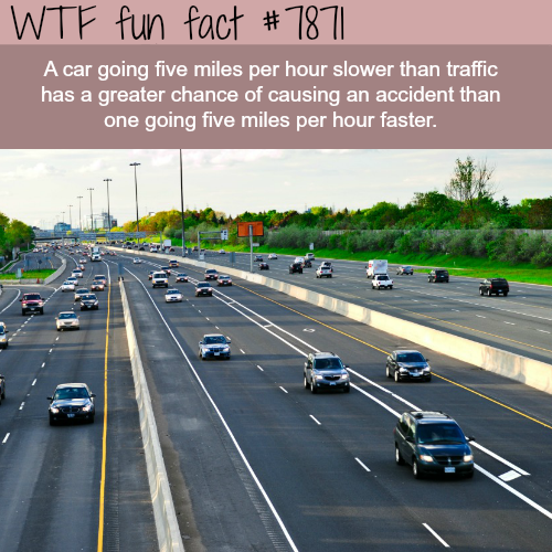 Don't drive slow - WTF fun fact