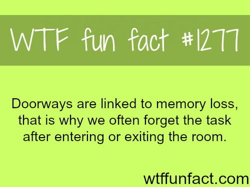 doorways and memory loss