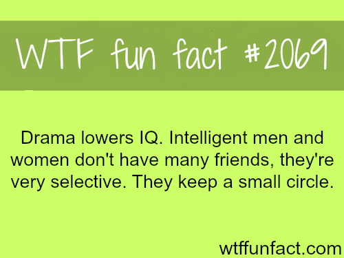 Drama lowers your IQ.-WTF fun facts