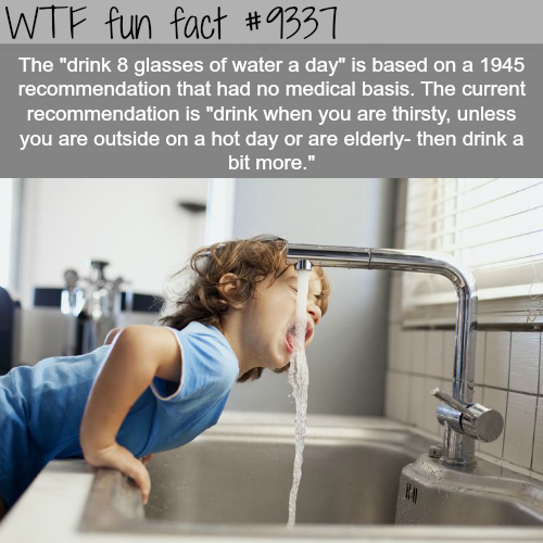 Drinking 8 glasses of water a day - WTF fun facts