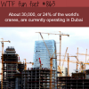 dubai has 24 of all the cranes in the world wtf