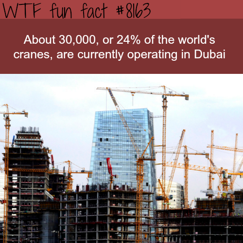 Dubai has 24% of all the cranes in the world - WTF fun fact