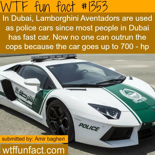 Dubai Lamborghini - police cars