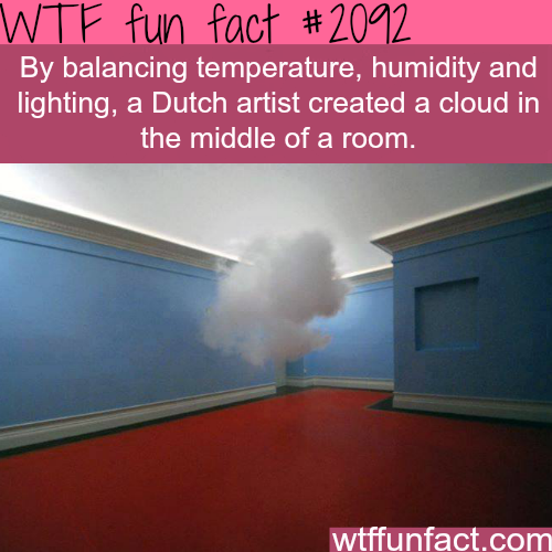Dutch artists creats a cloud in the middle of the room -  WTF fun facts