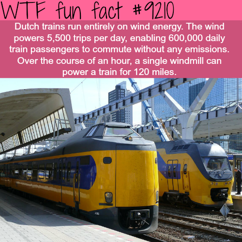 Dutch Trains - WTF Fun Fact