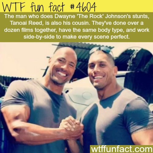 Dwayne Johnson's stunt double -   WTF fun facts