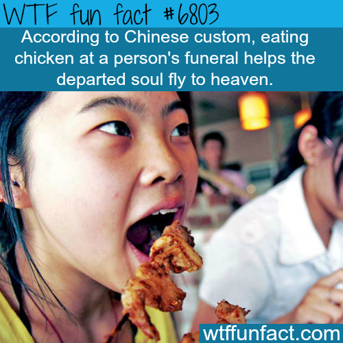 Eating chicken at a funeral - WTF fun fact