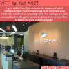 eco gym wtf fun facts