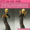 edvard munchs the scream wtf fun fact
