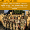 egypt compulsory military service wtf fun fact