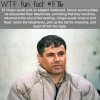 el chapo wtf fun facts