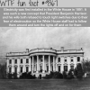 electricity in the white house wtf fun facts