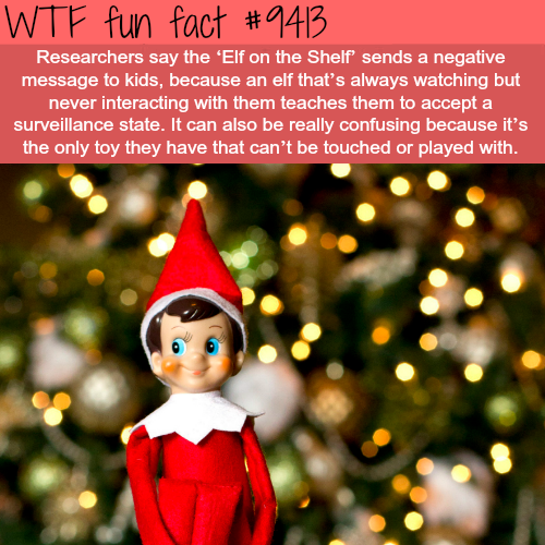 Elf in the Shelf - WTF fun facts