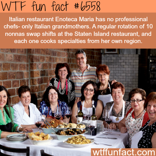 Enoteca Maria - WTF fun facts