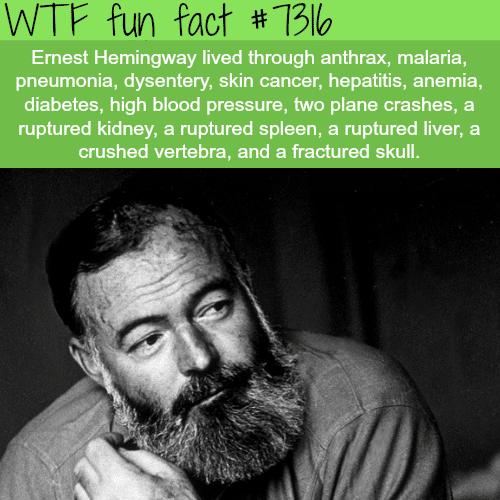 Ernest Hemingway - WTF fun fact