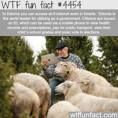 Estonia's e-government -   WTF fun facts