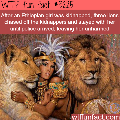 Ethiopian girl saved by lions -  WTF fun facts