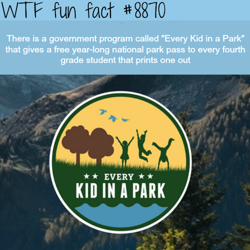 Every Kid in a Park- WTF fun facts