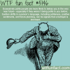 excessively polite people wtf fun facts