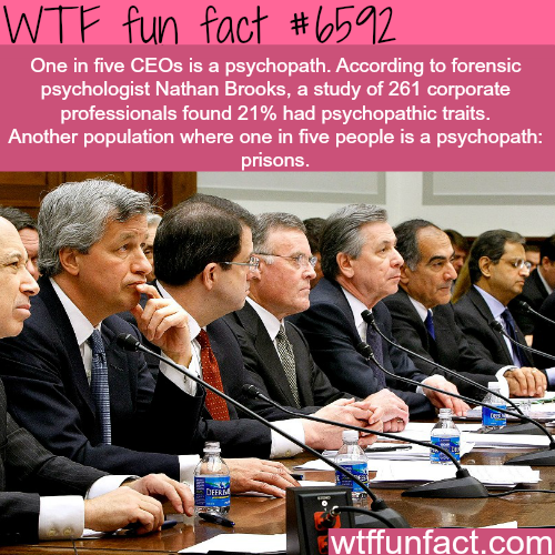 Facts about CEOs - WTF fun facts