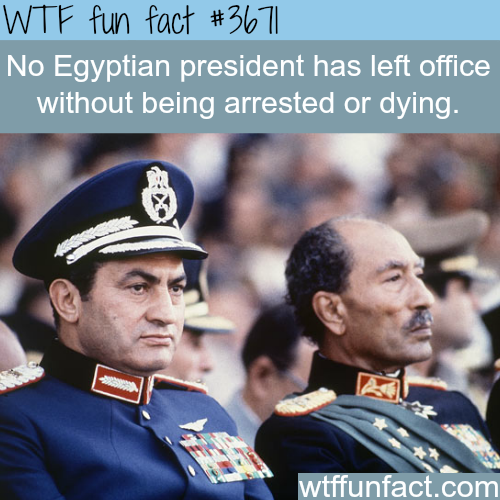 Facts about Egypt  -  WTF fun facts