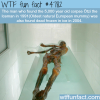 facts about the 5000 year old otzi wtf fun