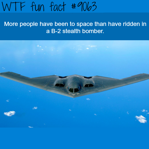 Facts About the B-2 Stealth Bomber - WTF fun facts