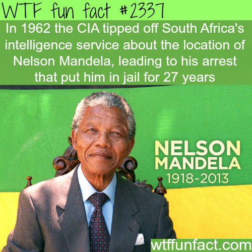 Facts about the CIA you never knew - WTF fun facts