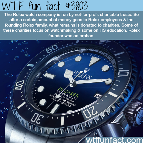 Facts about the Rolex watch company - WTF fun facts