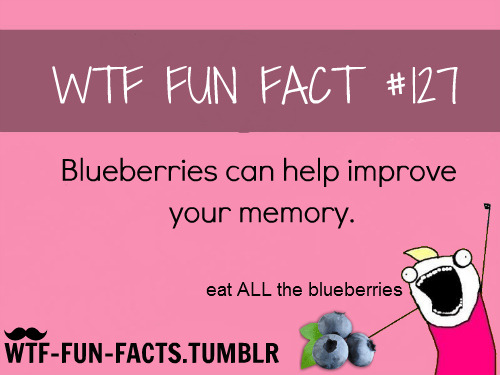 eat ALL THE Blueberries!