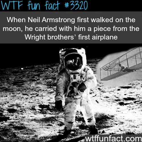 Facts you never knew about the moon landing -WTF fun facts