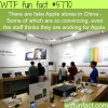 fake apple stores in china wtf fun facts