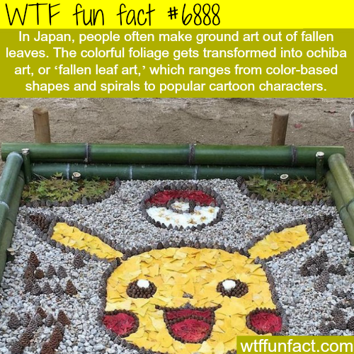 Fallen leaf art in Japan - WTF fun fact