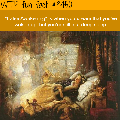 False Awakening - WTF fun fact