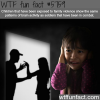 family violence wtf fun facts