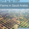 farms in saudi arabia wtf fun facts