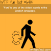 fart wtf fun facts