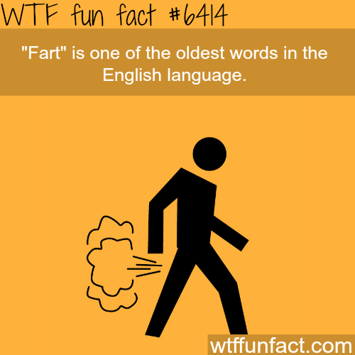 Fart - WTF fun facts