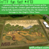 father of crop art stan herd wtf fun facts